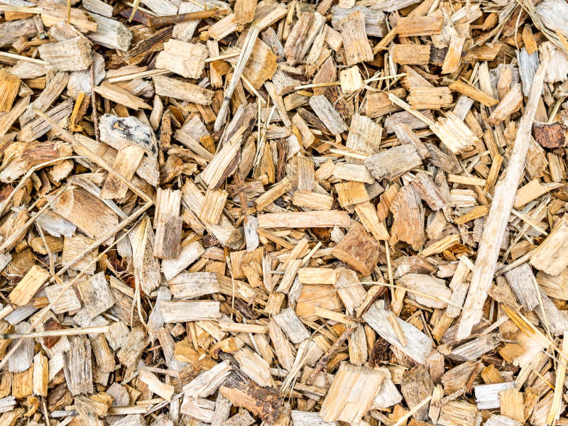 All About Wood Chips