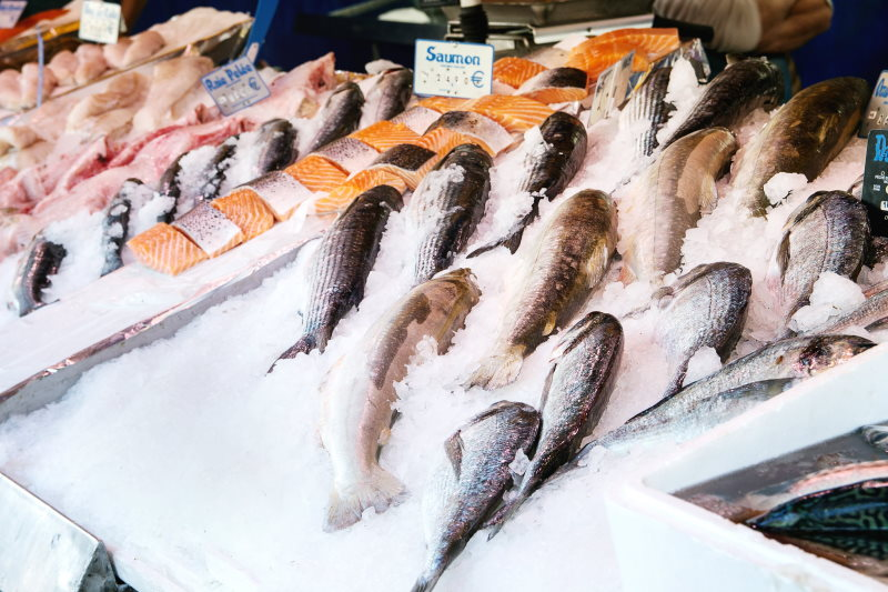 What kinds of fish are good to smoke