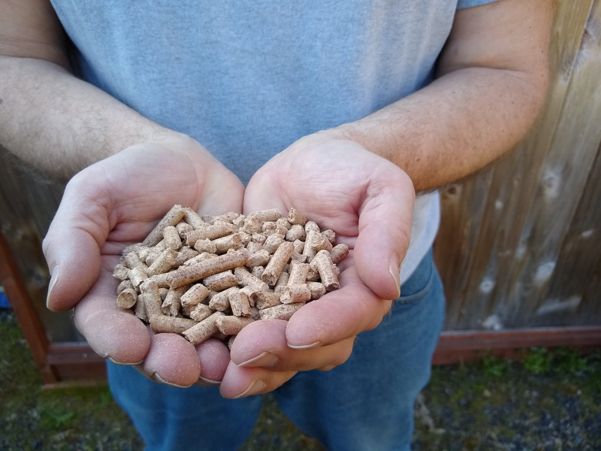 All About Wood Pellets